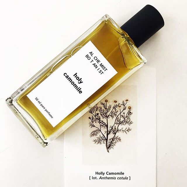 MidSummer smell >>> Holy Camomile >  Alchemist Botanist collection  TOP: Aldehyde, Grapefruit HEART: Wild Camomile, Jasmine, Bay Leaf BASE: Black Amber, Ambergris, Patchouli, Olibanum, Dry Wood, Benzoin, Musk  www.fumparfum.com  #FUMparFUM #creative #studio #AlchemistBotanist #collection #botany #nature #wild #camomile #art #niche #artictic #perfumery #handmade #craft #perfumes #fragrances #artisan #parfum #excellent #work #midsummer #smell